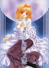 「月に酔う瞳」(月姫)  AMORPHOUS
